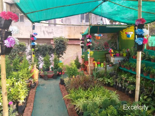 Sardar Nursery