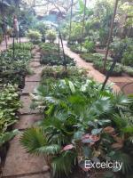 N K U Agro Shivajinagar