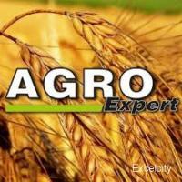 Yesraj Agro Exports Market Yard