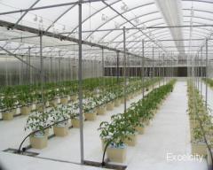 Ginwala Advanced Farm Equipments