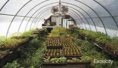 Swapnapurti green House