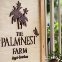 The Palmnest Farm
