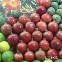 Shiv Sagar Fruit Juice Corner