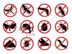 V. L. Pest Control