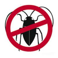 Bed Bug Organic Pest Control