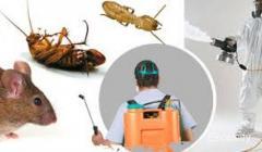 Sree Ganesh Pest Control