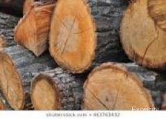 Shantanu Firewood Suppliers