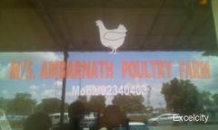 Ambarnath Poultry Farm