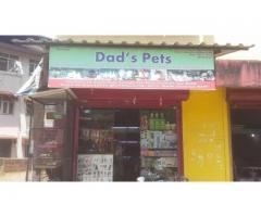 Dad's Pets