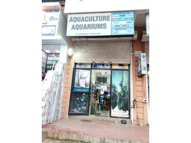 Aquaculture Aquariums