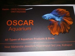 Oscar Aquarium and Pets shop