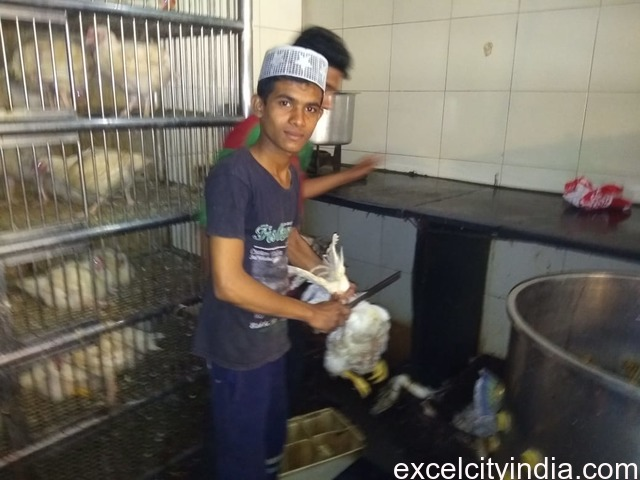 Kolhapur Chicken Center