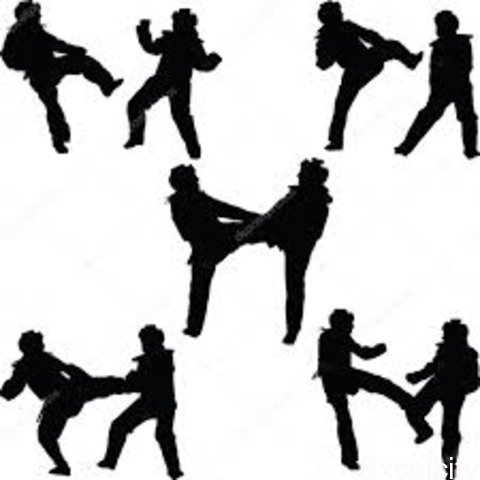 FIGHTER S TAEKWONDO ACADAMY