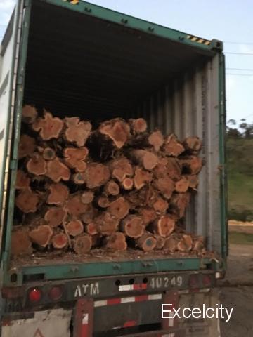 Mihir Wood Sale