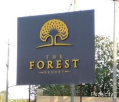 The Forest Resort
