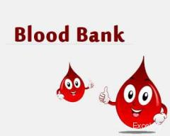 VP Blood Bank and Lab Vashi