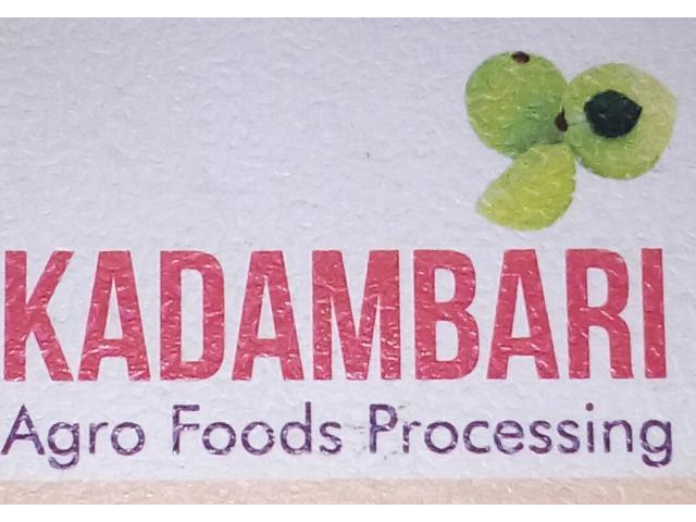Kadambari Agro Foods