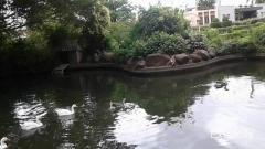 Manas Garden Sangramnagar, AKLUJ