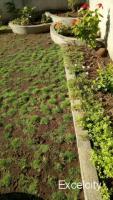 Saikrupa Garden